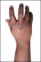Retopologized 3D Hand scan of Igbinovia