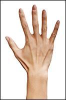 Retopologized 3D Hand scan of Ishikawa Sayoko Asian female