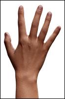 Retopologized 3D Hand scan of Maria Mccarthy European female