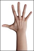 Retopologized 3D Hand scan Noah George European male