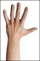Retopologized 3D Hand scan of Reece Griffiths European male