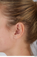Photos of Morena Andino ear 0001.jpg