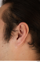 Photos of Shinobu Gyukudo ear 0001.jpg