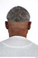 Photos of Everson Baker hair head 0004.jpg