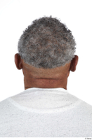 Photos of Everson Baker hair head 0005.jpg