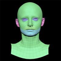 Lucy Evans Subdivs 3D Model