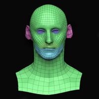 Roland Stewart Subdivs 3D Model
