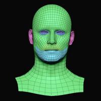Jackson Henderson Subdivs 3D Model