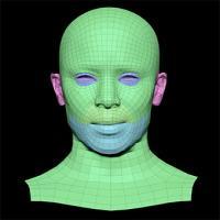 Adlynn Price Subdivs 3D Model
